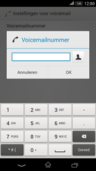 Sony E2003 Xperia E4G - Voicemail - handmatig instellen - Stap 8