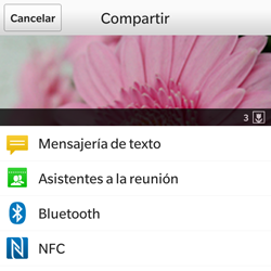 BlackBerry Q5 - Bluetooth - Transferir archivos a través de Bluetooth - Paso 8