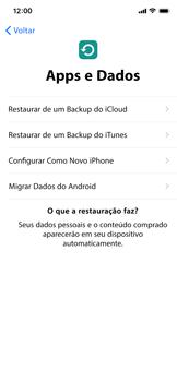 Apple iPhone XR - Primeiros passos - Como ativar seu aparelho - Etapa 14