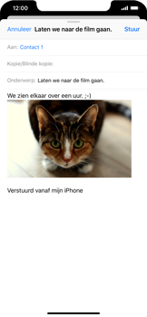 Apple iPhone XS Max - E-mail - Bericht met attachment versturen - Stap 14