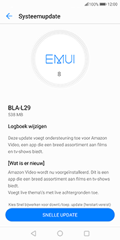 Huawei Mate 10 Pro - Software update - update installeren zonder PC - Stap 6