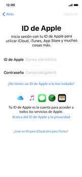 Apple iPhone X - Primeros pasos - Activar el equipo - Paso 16