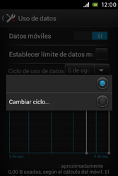 Sony Xperia E - Internet - Ver uso de datos - Paso 6