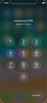 Apple iPhone X - Mensajería - Configurar el equipo para mensajes multimedia - Paso 16