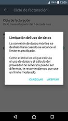 Sony Xperia XA1 - Internet - Ver uso de datos - Paso 9