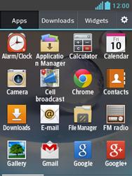 LG E430 Optimus L3 II - Email - Manual configuration POP3 with SMTP verification - Step 3