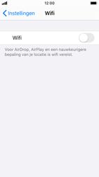 Apple iphone-se-met-ios-13-model-a1723 - WiFi - Handmatig instellen - Stap 4