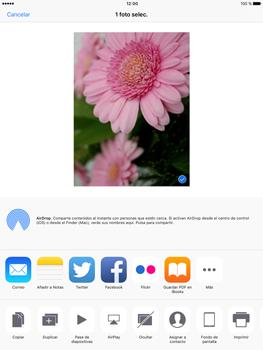 Apple iPad Pro 9.7 - Funciones básicas - Uso de la camára - Paso 10