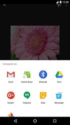 LG Google Nexus 5X (H791F) - Funciones básicas - Uso de la camára - Paso 17
