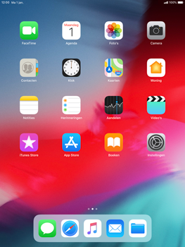 Apple iPad 9.7 (2018) iOS12 - Internet - internetten - Stap 1