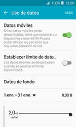 Samsung Galaxy J1 (2016) (J120) - Internet - Ver uso de datos - Paso 5