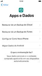 Apple iPhone 7 - iOS 12 - Primeiros passos - Como ativar seu aparelho - Etapa 15