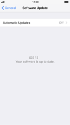 Apple iPhone 6 - iOS 12 - Device - Software update - Step 7