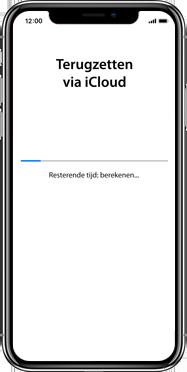 Apple iphone-xs-max-met-ios-13-model-a1921 - Instellingen aanpassen - Hoe gebruik ik de Automatisch inloggen-optie - Stap 20