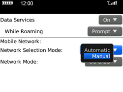 BlackBerry 9300 Curve 3G - Network - Usage across the border - Step 5