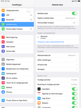Apple ipad-mini-5-7-9-inch-2019-model-a2124 - Internet - Handmatig instellen - Stap 5