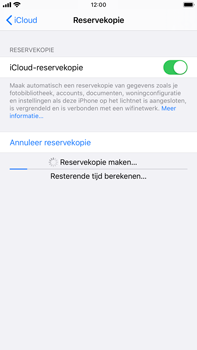 Apple iphone-6s-plus-met-ios-13-model-a1687 - Instellingen aanpassen - Back-up maken in je account - Stap 24