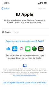 Apple iPhone XR - Primeiros passos - Como ativar seu aparelho - Etapa 15