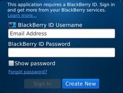 BlackBerry 9900 Bold Touch - BlackBerry activation - BlackBerry ID activation - Step 6