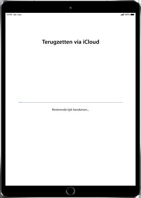 Apple iPad Air 2 - iOS 11 - Instellingen aanpassen - Hoe gebruik ik de Automatisch inloggen-optie - Stap 21