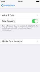 Apple iPhone SE - iOS 10 - Internet - Disable data roaming - Step 5