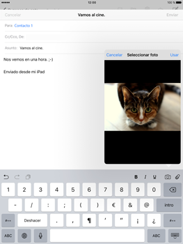 Apple iPad Pro 9.7 - E-mail - Escribir y enviar un correo electrónico - Paso 11