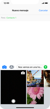 Apple iPhone X - Mensajería - Escribir y enviar un mensaje multimedia - Paso 10