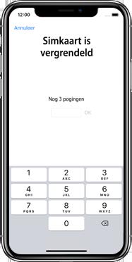 Apple iphone-xs-max-met-ios-13-model-a1921 - Instellingen aanpassen - Hoe gebruik ik de Automatisch inloggen-optie - Stap 23