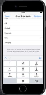 Apple iPhone 6 - iOS 11 - Aplicaciones - Tienda de aplicaciones - Paso 17