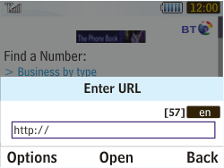 Samsung S3350 Chat 335 - Internet - Internet browsing - Step 12
