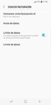 Samsung Galaxy S8 - Internet - Ver uso de datos - Paso 12