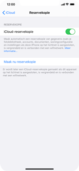 Apple iPhone 11 Pro Max - Data - maak een back-up met je account - Stap 12