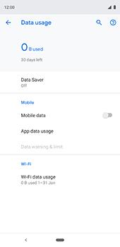 Google Pixel 3XL - Internet - Disable data usage - Step 7