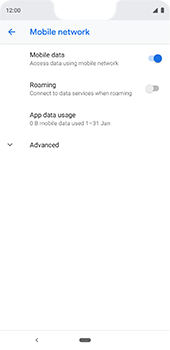 Google Pixel 3XL - Internet - Usage across the border - Step 7