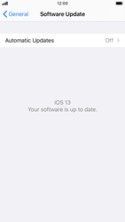 Apple iPhone 8 - iOS 13 - Device - Software update - Step 7