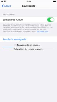 Apple iPhone 7 Plus - iOS 13 - Données - créer une sauvegarde avec votre compte - Étape 13