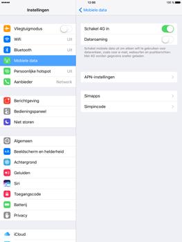 Apple iPad mini 4 iOS 10 - Netwerk - Wijzig netwerkmodus - Stap 5