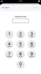 Apple iphone-6s-met-ios-13-model-a1688 - Beveiliging en ouderlijk toezicht - Hoe wijzig ik mijn SIM PIN-code - Stap 6