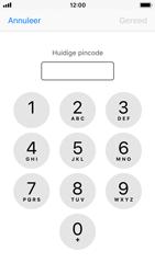 Apple iphone-5s-met-ios-11-model-a1457 - Beveiliging en ouderlijk toezicht - Hoe wijzig ik mijn SIM PIN-code - Stap 6