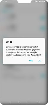 LG v40-thinq-lm-v405ebw - Buitenland - Internet in het buitenland - Stap 7