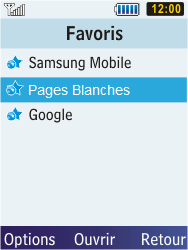 Samsung C3350 Xcover 2 - Internet - Navigation sur Internet - Étape 13