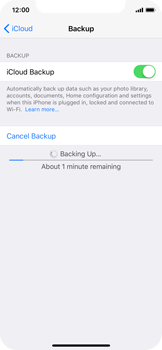 Apple iPhone X - Device maintenance - Create a backup of your data - Step 12