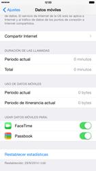 Apple iPhone 6 Plus iOS 8 - Internet - Ver uso de datos - Paso 4