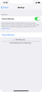Apple iPhone XS - Data - Create a backup with your account - Step 13