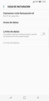 Samsung Galaxy S8 - Internet - Ver uso de datos - Paso 9