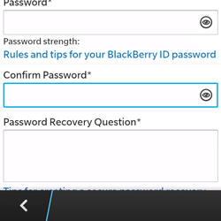 BlackBerry Q5 - Applications - Downloading applications - Step 11