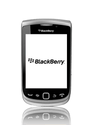 BlackBerry 9810 Torch - Internet - Hoe te internetten - Stap 12