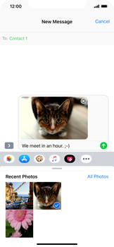 Apple iPhone XS Max - MMS - Sending a picture message - Step 13