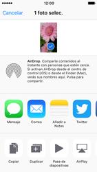 Apple iPhone SE iOS 10 - Funciones básicas - Uso de la camára - Paso 10