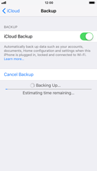 Apple iPhone 6s - iOS 11 - Device maintenance - Create a backup of your data - Step 11